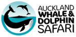 Auckland Whale and Dolphin Safari (AWADS) – Auckland Charter Boats Dolphin and Whale Watching